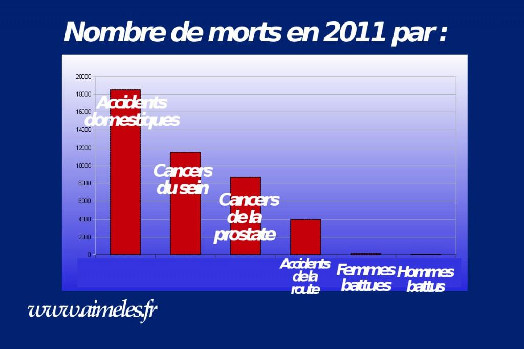cause-mortalité-2011-France