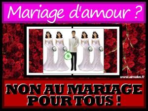 polygamie-mariage-pour-tous