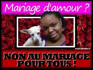zoophilie-mariage-homosexuel