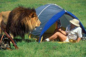 Pour un camping réussi !