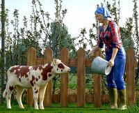 fermiere